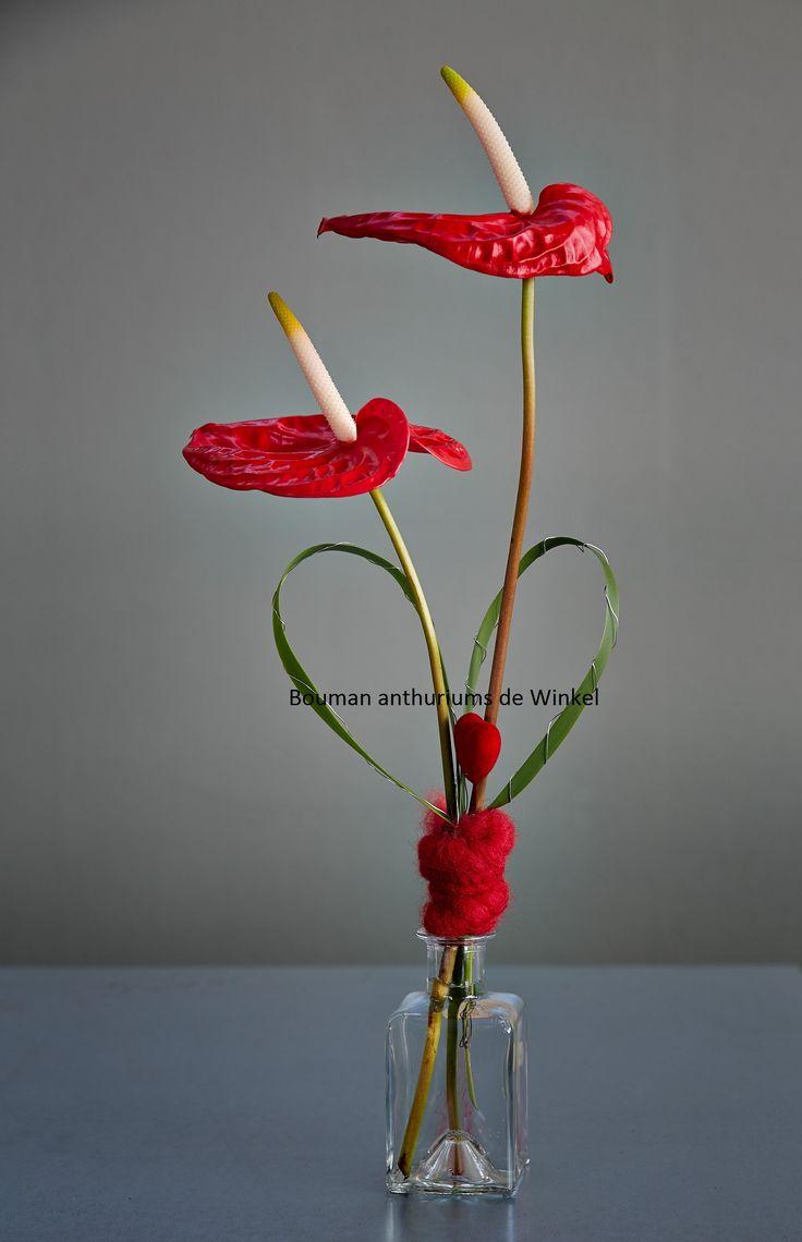 Een prachtige creatie van anthuriums voor moederdag