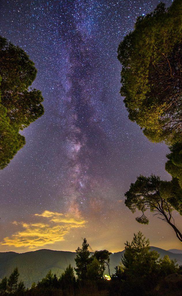 ~~Milky Way among the trees | Porto Germeno, Attica, Greece | by Vagelis Pikoulas~~
