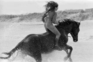 """""""Maybe some women aren't meant to be tamed. Maybe they just need to run free until they find someone just as wild to run wi…   Inspirations & Reminders   Pinte…"""