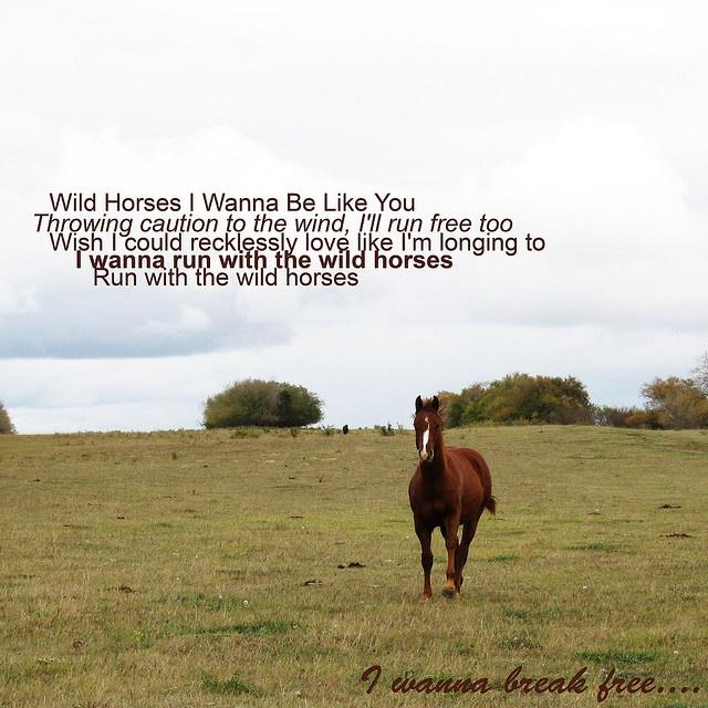 Natasha Bedingfield - Wild Horses... my favorite songs of hers