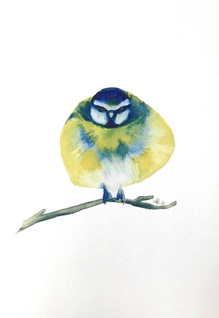 Watercolor bluetit bird painting / illustration