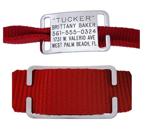 Boomerang Tags' Collar Tags: this is the method I prefer. I like that you can slip it off one collar and onto the next if you're one of those fashionable multi-collar-owning pet parents. The tags run $9.20 to $10.99; collars are also available.