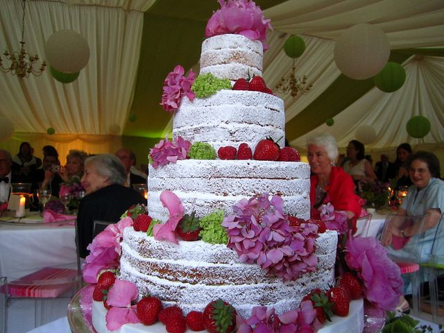 Naked Wedding Cake without the pink frilly's