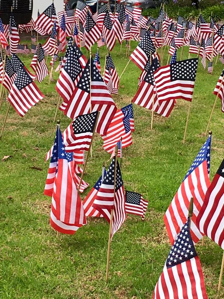 Field of Flags at United Healthcare in #LosAlamitos, image by Lori Norman #OCPhoto2017 #OrangeCounty #SoCal #oclife #MemorialDay2017