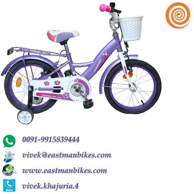 best bicycles company in india