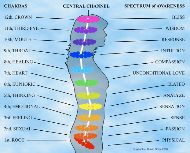 The Twelve Chakras Related Keywords & Suggestions - The