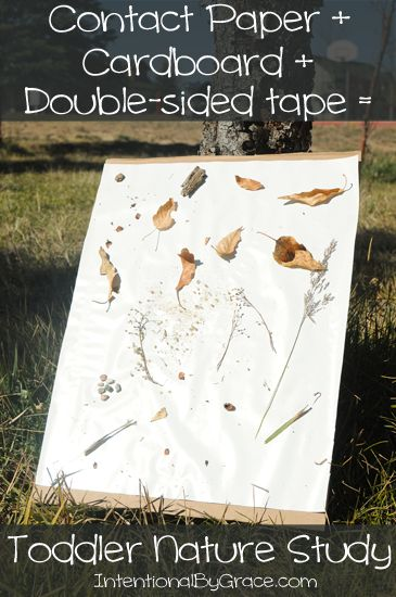 Toddler Nature Study Instructions - perfect for a fall playdate outdoors!