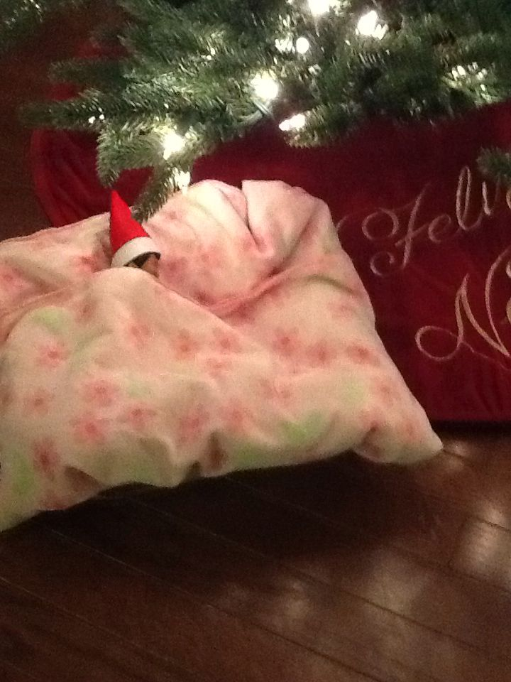 Day 1 - elf on the shelf...long flight from North Pole (lots of traffic) so Elf Sophie slept in Sophie arrived the Saturday after Thanksgiving in the evening.