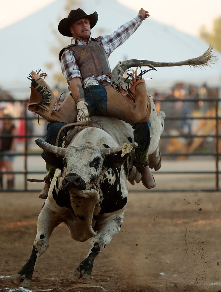 Andrew A. Nelles - Photojournalist: Bull Riding