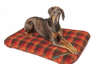 Slinky comfortably on a XL Kennel Pad with Autumn Check Fleece Cover $160.00