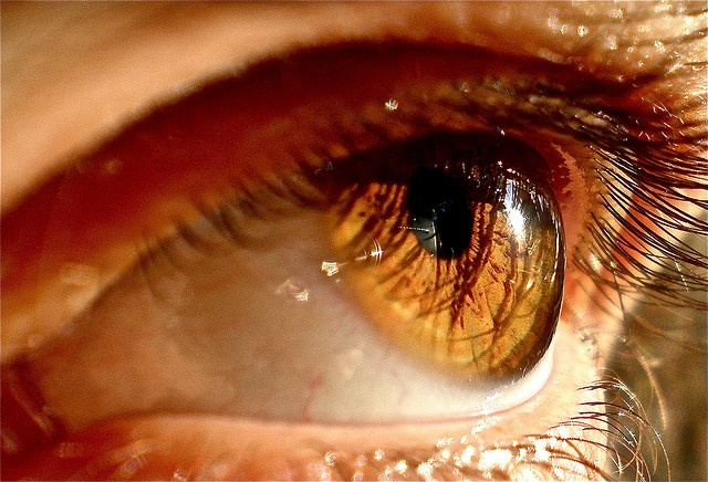 Dark Green Eye Contacts 1000+ images about Col...