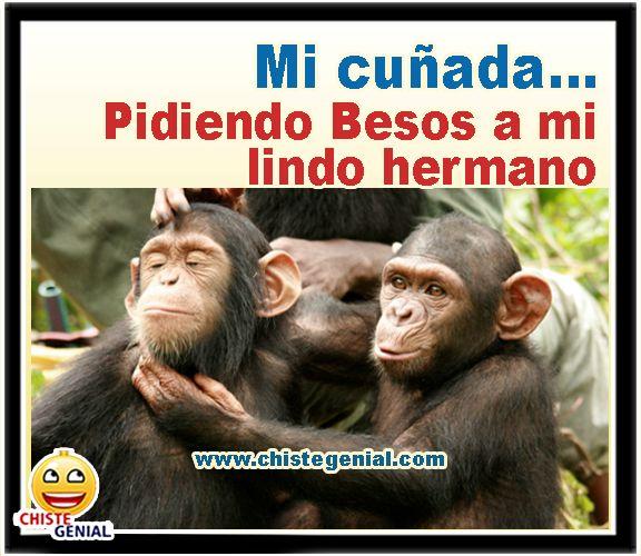 Mi Cunada Pidiendo Besos A Mi Lindo Hermano Funny Spanish Memes Crazy Funny Memes Funny Memes
