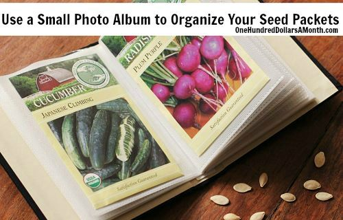 Best idea EVER! Use a small photo album to organize your seed packets! (from OneHundredDollarsAMonth.com)