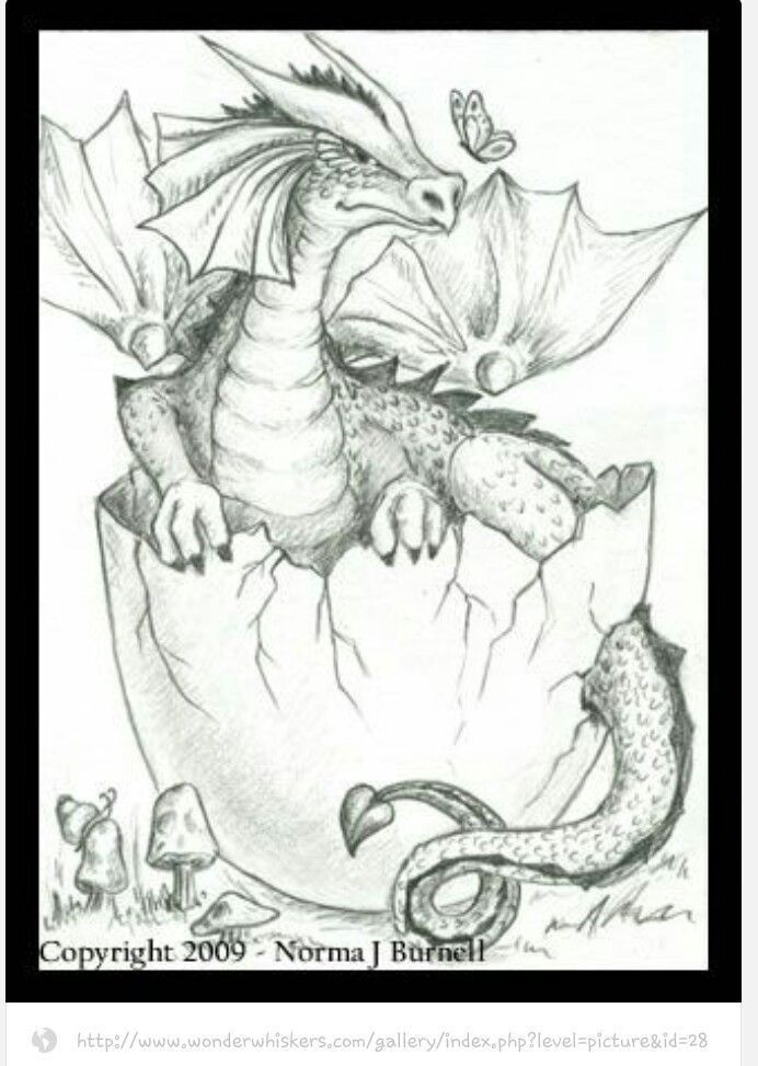 Dragon Egg Coloring Page Youngandtae Com Dragon Coloring Page Coloring Pages Coloring Books