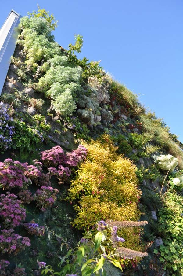 Lovely Living Wall   A Vancouver Library #verticalgreen #livingwall Design Ideas