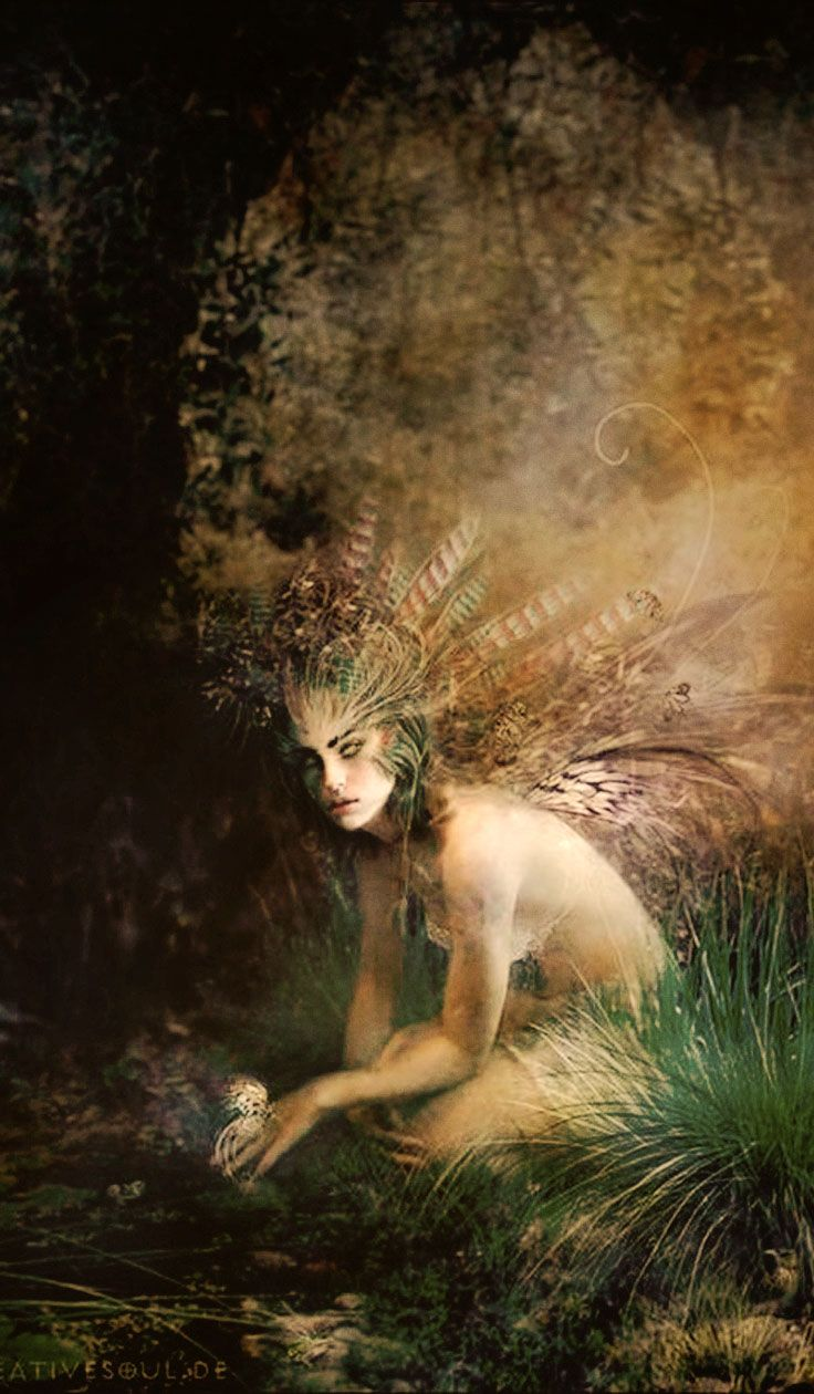 17+ ideas about Faeries on Pinterest