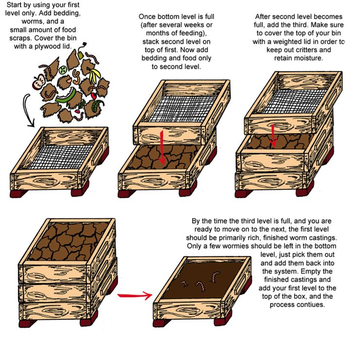 Diy Compost Bin Apartment: Worm Towers & Vermiculture Images On