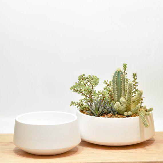 Enjoyable Succulent Planter Succulent Bowl Tabletop Succulent Interior Design Ideas Apansoteloinfo