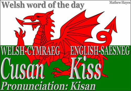 I recently came across a wonderful Cymraeg blog called The Welsh Word of the Day, where you can see different words in Welsh, along with the translation and pronunciation in English.    You may even submit a word or words for translation–just words, however, not sentences or quotes, because that would entail a HUGE workload for the site admin, Mathew Hayes.  He's providing a great way for anyone with Welsh or Celtic heritage in general to learn a bit of the beautiful Welsh language.