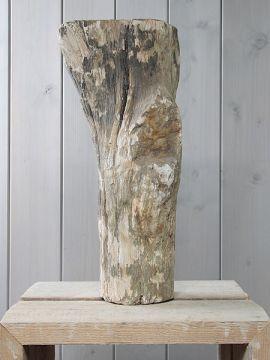 Fossiel hout SJ-2  Te zien via https://www.beeldenmarkt.nl/versteend-hout-1