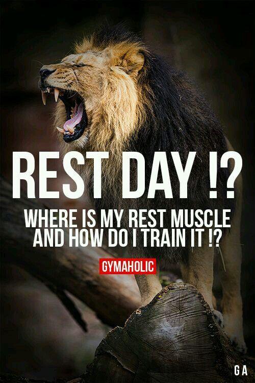 Harvey Specter Quotes Wallpaper Iphone Best 25 Rest Day Meme Ideas On Pinterest Funny Goals