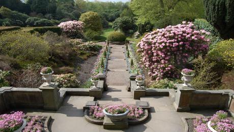 Sunshine at Biddulph Grange Garden