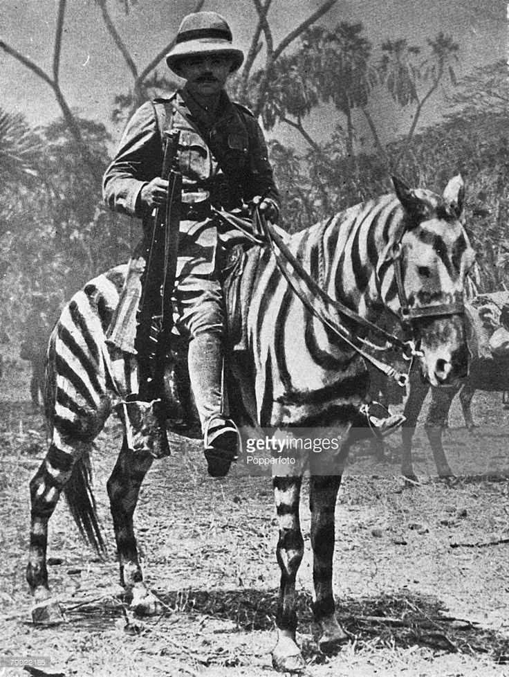World War I, 1915, Pony changed into a Zebra for operations in East Africa