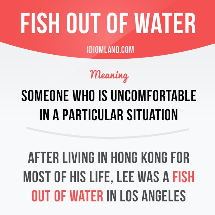 """""""Fish out of water"""" is someone who is uncomfortable in a particular situation…"""