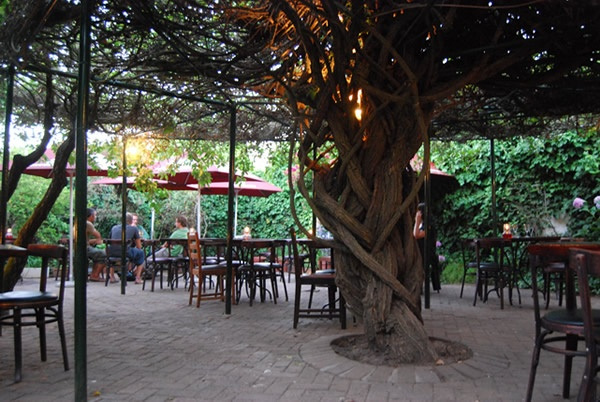 The Trumpet tree Stellenbosch - Dorp Street, good food at good prices