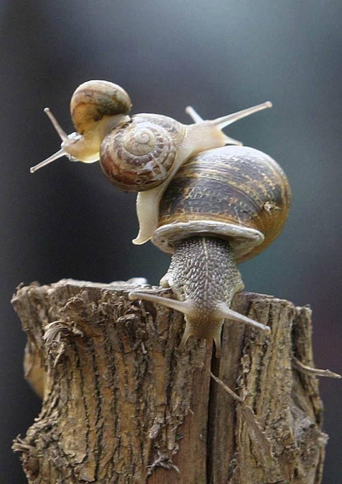 """Hang on! -- we're goin' down""!...  <3<3<3 (Simone Sampò photo)"