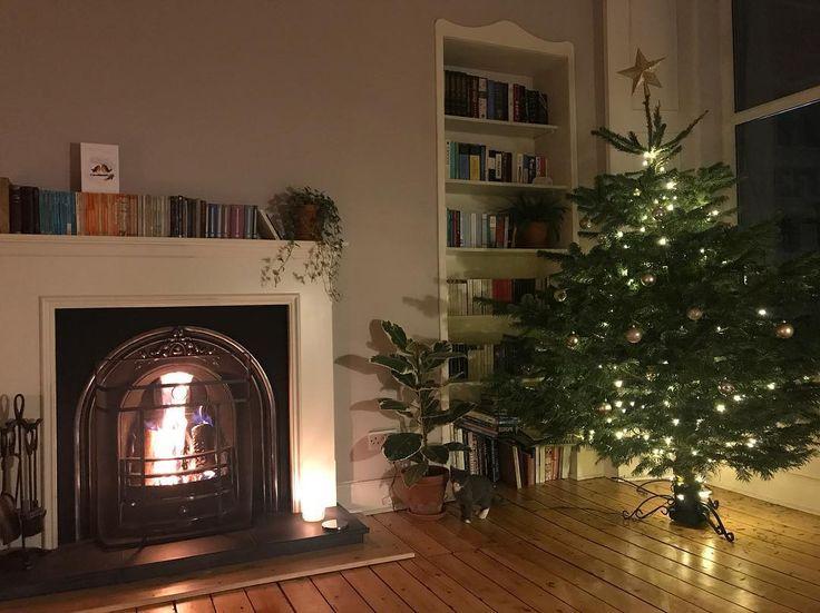 Spot wee Jura  #Christmas #christmastree #kitten #kittensatchristmas #kittensofinstagram #kittenatchristmas #kittensofig #openfire #glasgow #fireplace