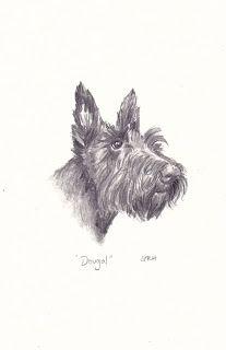 Sue Rundle-Hughes, Illustrator: Scottish terrier
