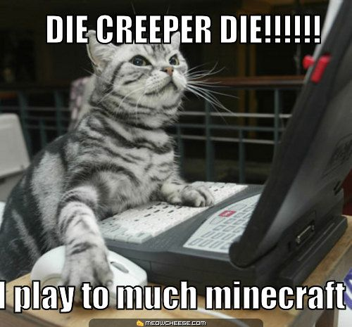 I do to you are not alone. I love minecraft!