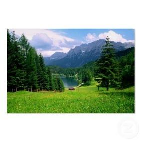 Alpine Meadow Print print