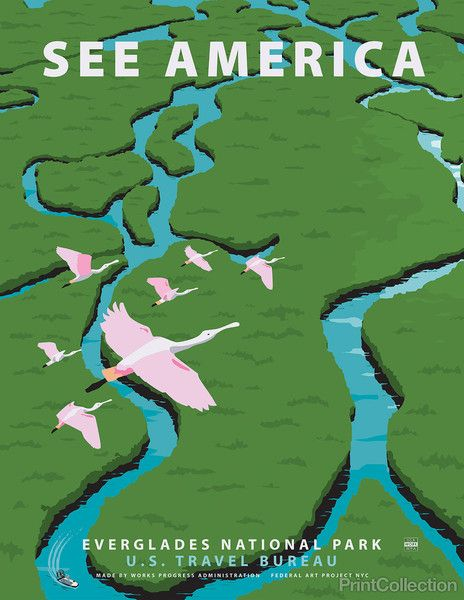 See America poster celebrating the Everglades National Park. In Southern Florida it is the largest wilderness of it's kind East of the Mississippi. Home to over 350 species of birds and more than 300 species of fresh and saltwater fish to name just a few of the native inhabitantants. Illustration by Steven Thomas in 2013.