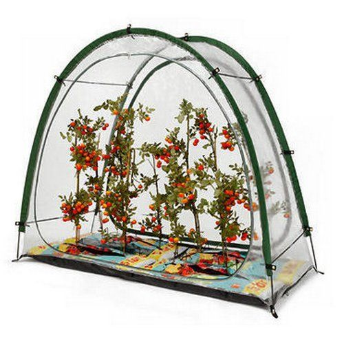 Culti Cave PVC Easy Erect Greenhouse  Price : £45.88 http://store.homefarmer.co.uk/Culti-Cave-Easy-Erect-Greenhouse/dp/B002ISPF6Q