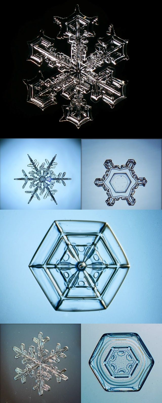 Macro snowflake photos by Sergey Kichigin