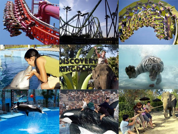 six flags discovery kingdom homeschool day