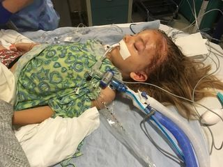 DUI suspect that crashed into family returning from Disneyland deported 15 times before ICE: Banda-Acosta deportations date back to 2002  Allison Horn 1:48 PM, May 9, 2017 3:19 PM, May 10, 2017