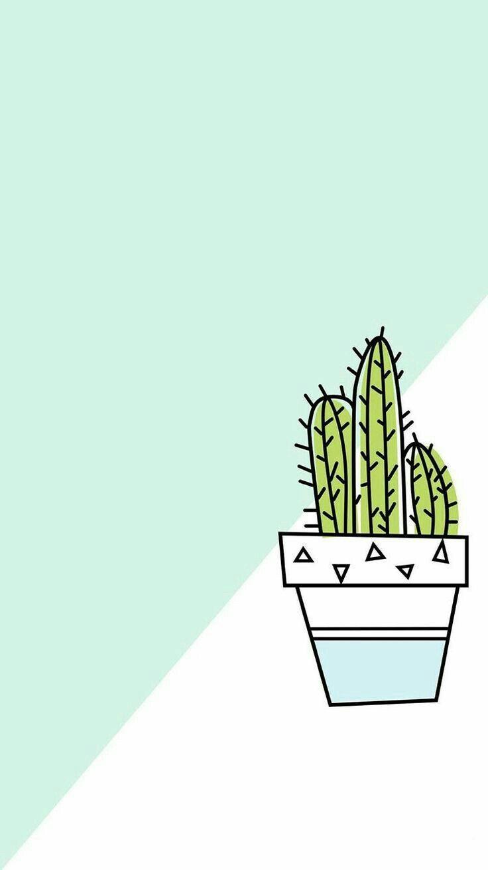 Cactus Wallpaper In 2019 Cute Wallpapers Trendy Wallpaper