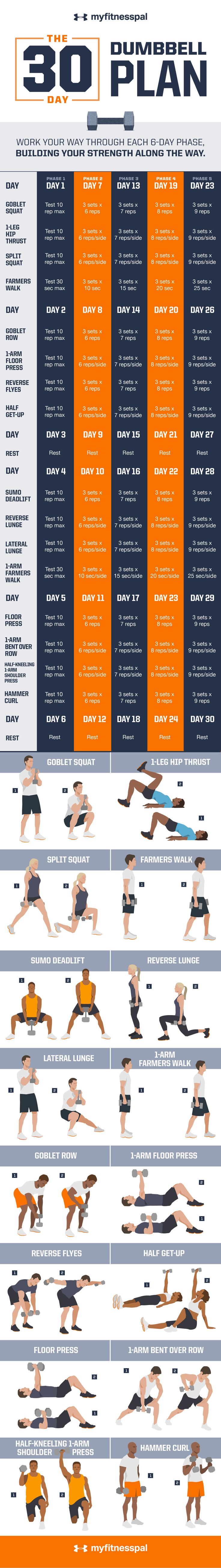 30 Day Dumbbell Plan workout                                                                                                                                                                                 More