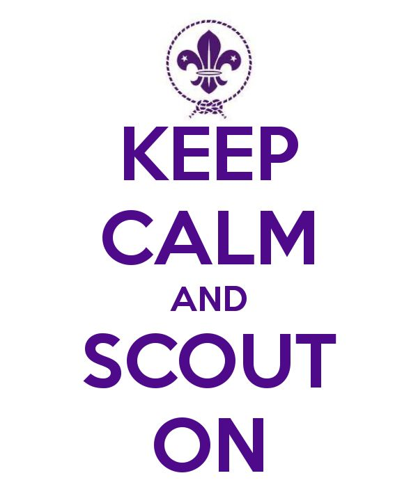 Google Image Result for http://sd.keepcalm-o-matic.co.uk/i/keep-calm-and-scout-on-5.png