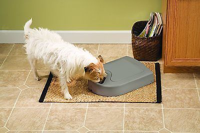 Automatic Pet Food Feeder Dog Cat Programmable Timer Portion Dish Dispenser NEW http://www.cleavercat.com/product-category/food/dry-food/ http://www.cleaverkitty.com/product-category/cat-feeders/automatic-cat-feeders/