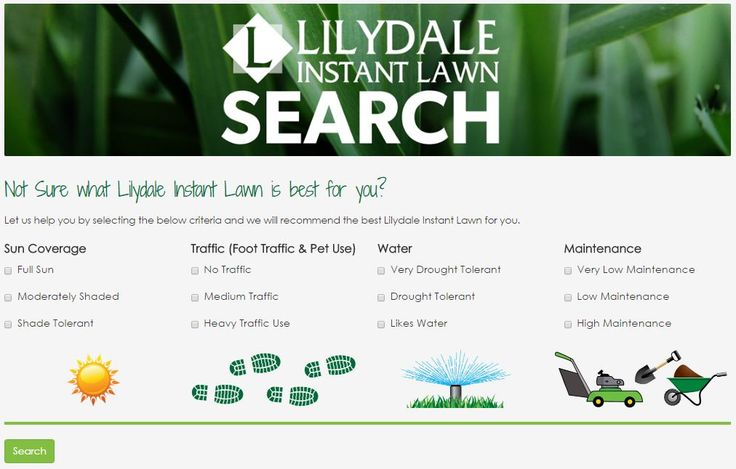 Take the lawn test today to find out what instant turf best suits your area to ensure you have the best lawn in the street. Lilydale Instant Lawn Care | Love your lawn | Great grass | Lily & Dale | Follow us | Garden Tips & Advice | Contact us | Lawn Solutions Australia