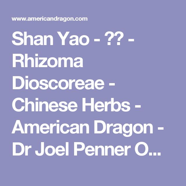 Shan Yao - 山藥 - Rhizoma Dioscoreae - Chinese Herbs - American Dragon - Dr Joel Penner OMD, LAc