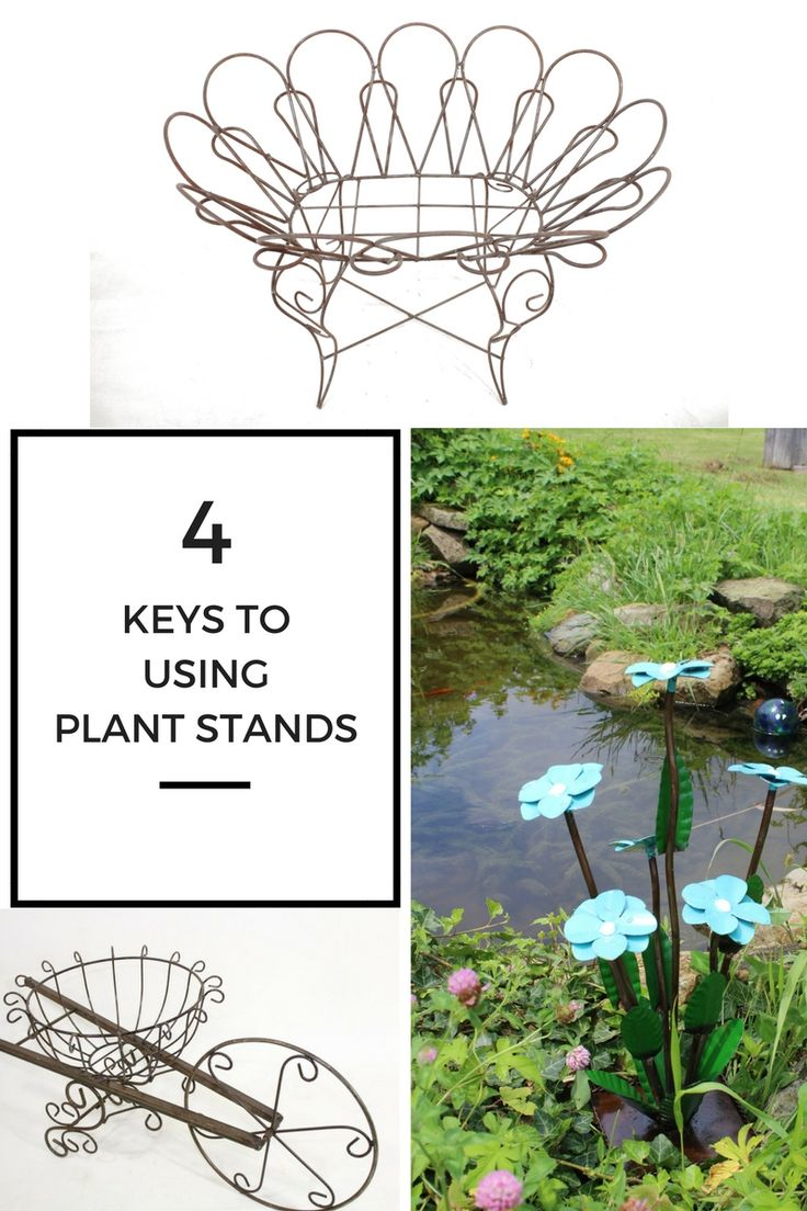 17 best images about flower plant stands unique on pinterest planters ferns and blooming - Fabulous flower stand ideas to display your plants look more beautiful ...