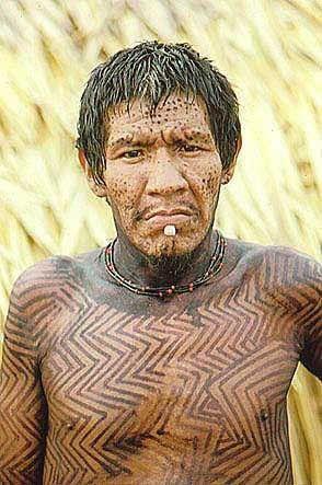 Parakanã : # Onde estão:  Pará # Quantos são: 900 (Fausto, 2004) # Família linguística: Tupi-Guarani  Os Parakanã são habitantes tradicionais do interflúvio Pacajá-Tocantins.  Falam uma língua tupi-guarani pertencente ao mesmo subconjunto do Tapirapé, Avá (Canoeiro), Asurini e Suruí do Tocantins, Guajajara e Tembé.  São tipicamente índios de terra firme, não ...
