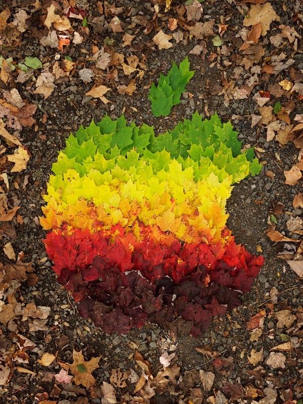 Apple Logo Autumn Spectrum by Mr. Dale
