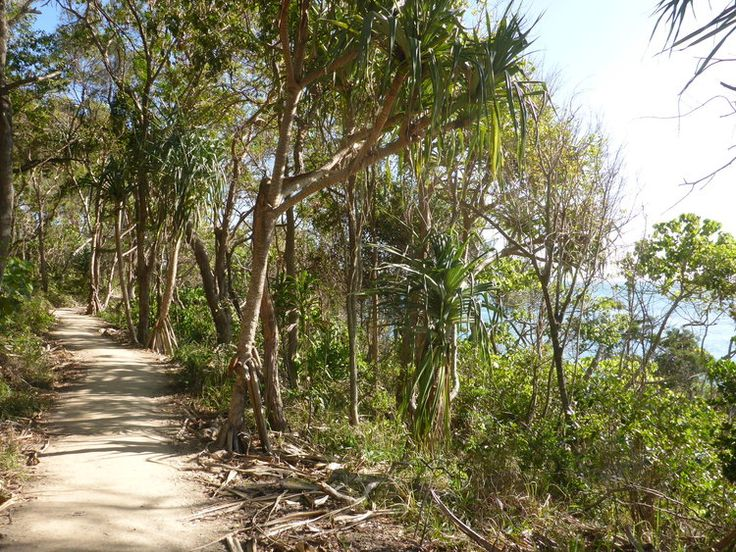 Walking back to Noosa Main Beach