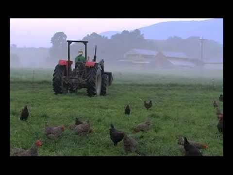 Joel Salatin appears in several documentaries, including Fresh the Movie, and Food Inc.  I like the way he does business!